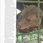 bali-exotica_page_18-copy